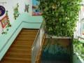 充满绿意的楼梯.走廊 (14)