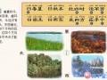 三字经 (26)
